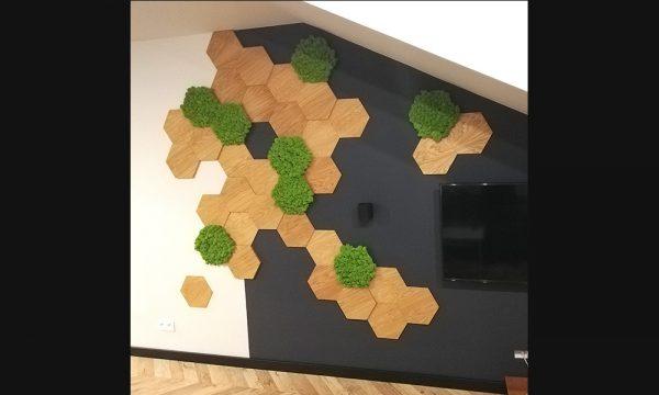 Mech chrobotek - panele dekoracyjne zaprezentowane na ścianie